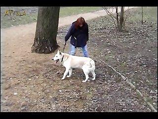 The Walk (part 1)