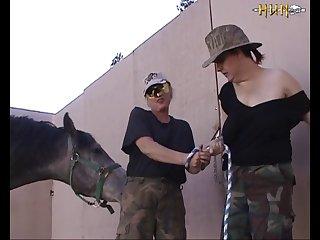 Fun In The Dog Yard (part 1)