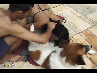 Hot Brunette Gets Mounted By Eager Dog (part 2)