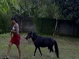 Horse Man Xvideo